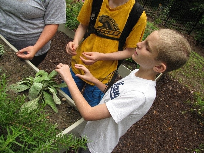 Students stand around a raised garden box while one student touches a sage plant with his eyes closed.