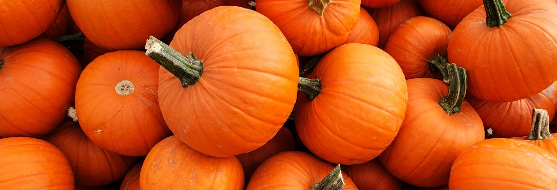 A pile of bright orange pumpkins.
